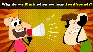 Why do we Blink when we hear Loud Sounds? | #aumsum