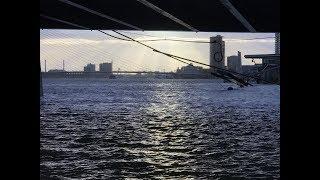 010nu - Storm raast over Rotterdam (compilatie)