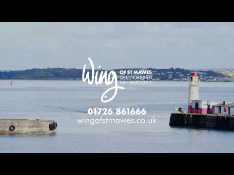Why chefs choose our Cornish fish | Wing of St. Mawes