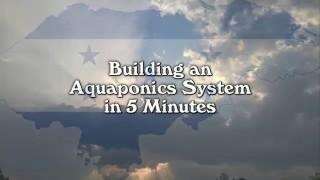 Ein Zeitraffer Blick von einem Aquaponics System Bauen