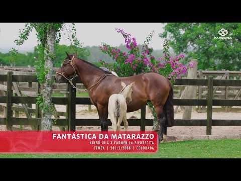 Lote 19 - Fantástica da Matarazzo
