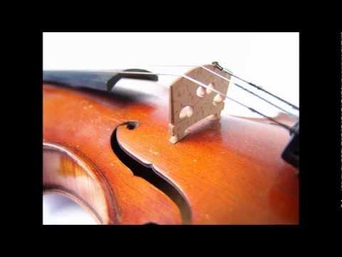 Mozart - Violin Concerto No. 1 in B flat, K. 207 [complete]