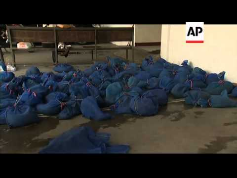 100 pangolins seized in wildlife smuggling crackdown