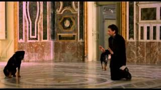 Il regista di matrimoni - I cani e la principessa