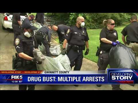 Major Gwinnett County drug bust