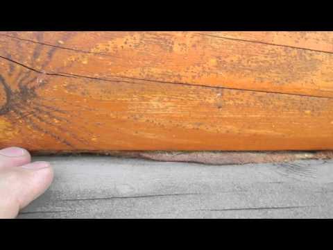 Трещины и щели в бревнах сруба из оцилиндрованного бревна