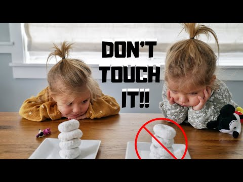 DON'T TOUCH IT CHALLENGE with TWINS