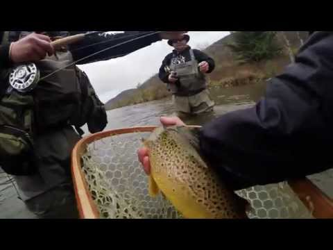 Fly Fishing for Trout - feat. Dave Brandt - WB Delaware River, Beaverkill River, Neversink River