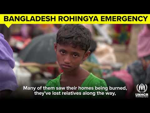 rohingya-refugee-crisis---update-from-the-field