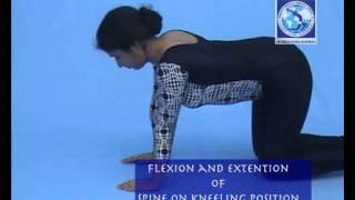 yoga exercises flexion and extension of spine on kneeling position