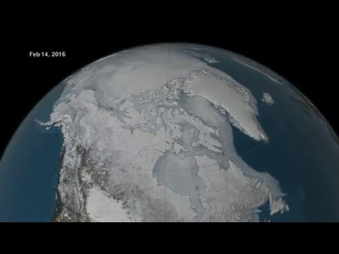 Arctic sea ice maximum - 2016