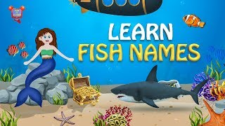 Best Kids Video For Kids - Learn Names Of Fish 2019 - Fun to learn Kids