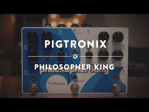 Pigtronix Philosopher King   Reverb Demo Video