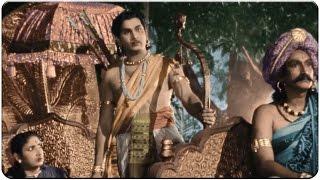 Action Between ANR & SVR at Forest || Mayabazar Movie || SVR, NTR, ANR, Savitri