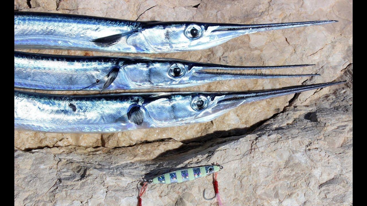 Fırında Zargana Balığı Sargan Balığı Videosu
