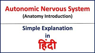 Autonomic Nervous System Anatomy in Hindi | ANS Introduction | Bhushan Science