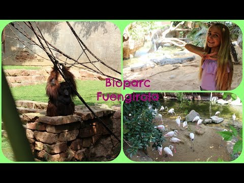 Un día entre animales en BIOPARC FUENGIROLA + Haul + Musical.y - Silvia Sánchez