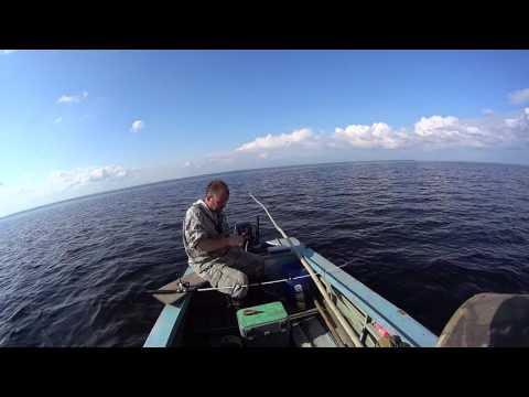 Отличная рыбалка, ловим