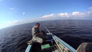 Отличная рыбалка, ловим сига и камбалу.