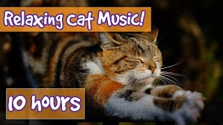 Relaxing Music for Cats with Nature Sounds! Soothing Music to Calm Dogs and Get Rid of Anxiety! 🐈💤