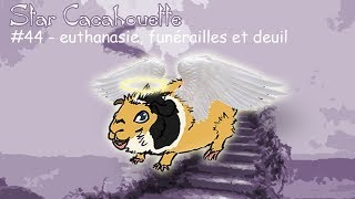 euthanasie, funérailles et deuil