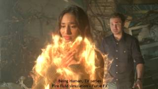 TV series: Being Human Season 3, Character fire