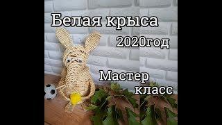 Полезная КРЫСА к 2020 г/крыса баночка/плетение из газетных трубочек
