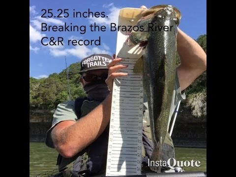 Brazos River King C&R record TPWD Largemouth Bass 25+ inches