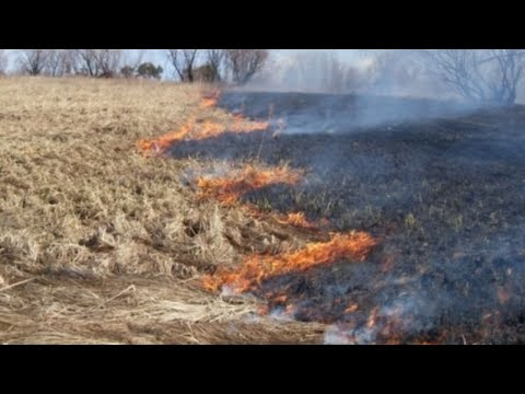 Степь горит. Природные пожары в Казахстане. Погода в СНГ