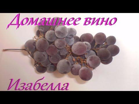 Домашнее вино из винограда изабелла. Простой пошаговый рецепт домашнего вина. Vino Fatto In Casa.