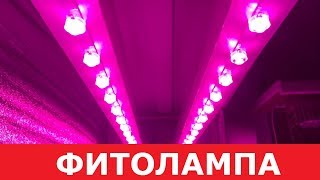 Фитолампа своими руками из светодиодов! Правильный свет для выращивания для растений.