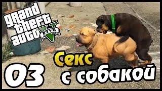 Прохождение :Grand Theft Auto V на PS4 СЕКС С СОБАКОЙ