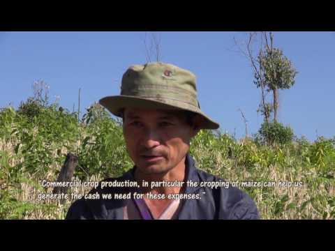 Karen traditional rotational farming systems in northern Thailand