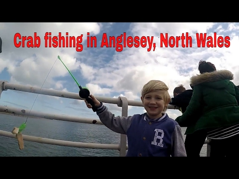 Crab Fishing In Anglesey, North Wales While Using Different Tactics To Catch Them