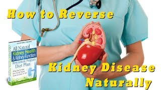 All Natural Kidney Health & Kidney Function Restoration Program Review
