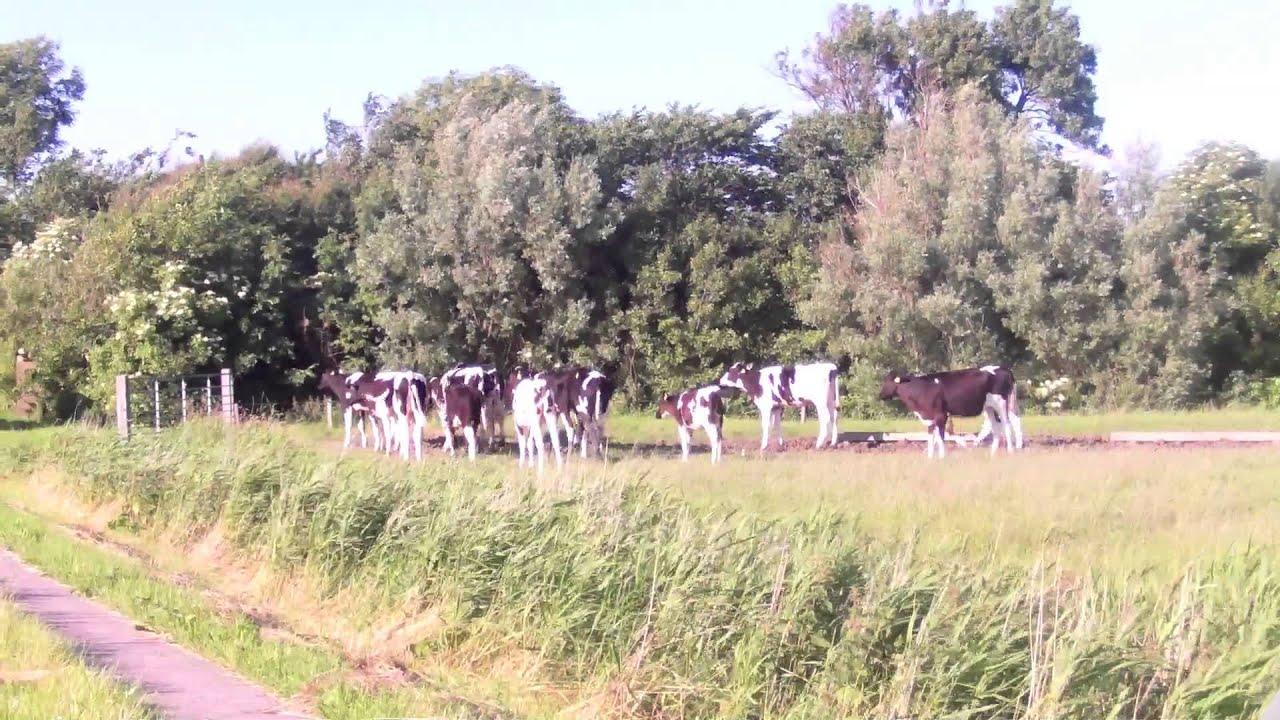 Unsere Kleine Farm Online Stream