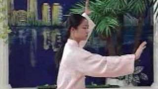 tai chi 24 forms part 7 a