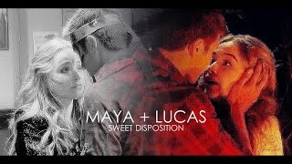 maya + lucas | of course I like you.