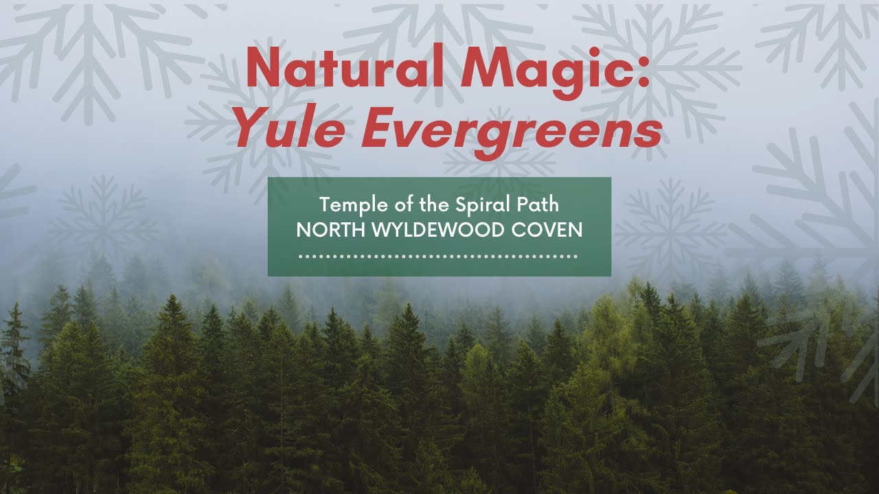 TSP's 12 Days of Yule 2020 - DAY 10 - Natural Magic: Yule Evergreens