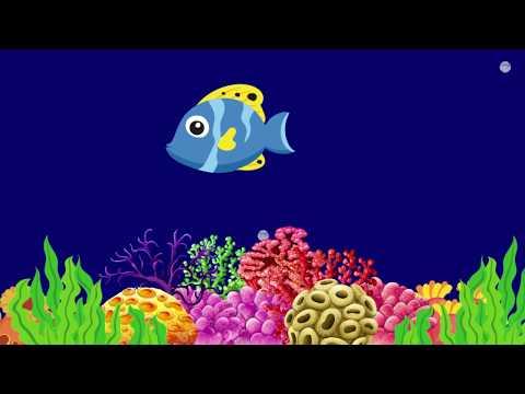 Baby Lullaby Peaceful Fish Animation / Çocuklar İçin Uyku Müziği (Ninni)