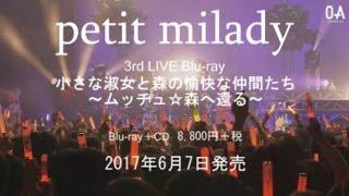2017年6月7日発売 petit miady 「3rd LIVE 小さな淑女と森の愉快な仲間...