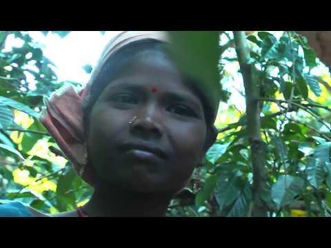 Indian Village Life Orissa State East India