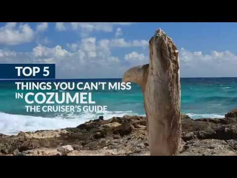5 Things You Can't Miss in Cozumel: The Cruiser's Guide