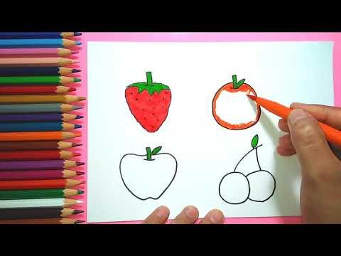 Cara Menggambar Buah Buahan Untuk Anak Mewarnai Full Download