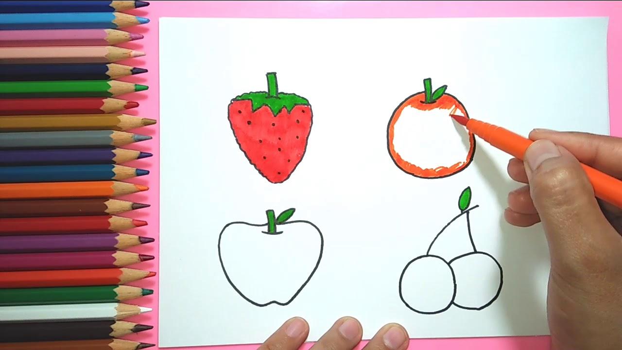 Cara Menggambar Buah Buahan Untuk Anak Mewarnai