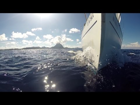 Moku pe'a Passage Bora Bora to Kaneohe 2014