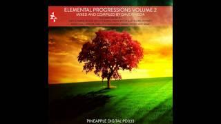 PD033 Ryo Nakamura - Luminescent (Original Mix) [Pineapple Digital]