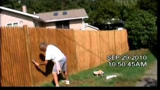 Fence Wash And Weather Sealing