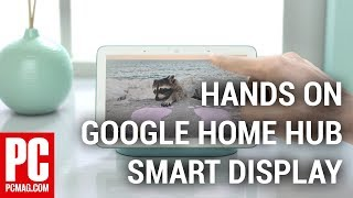 Hands On With the Google Home Hub Smart Display