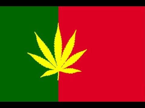 Cannabis, Cânhamo ou Liamba? Portugal 1998 ( Documentário completo )